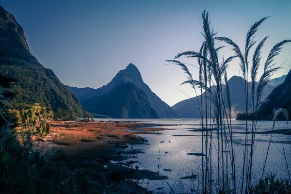 Milford Sound at dawn